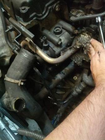 Image 959 from Replace the Thermostat Housing on a 2002 Ford Focus