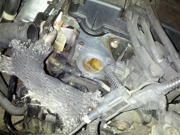 Image 968 from Replace the Thermostat Housing on a 2002 Ford Focus
