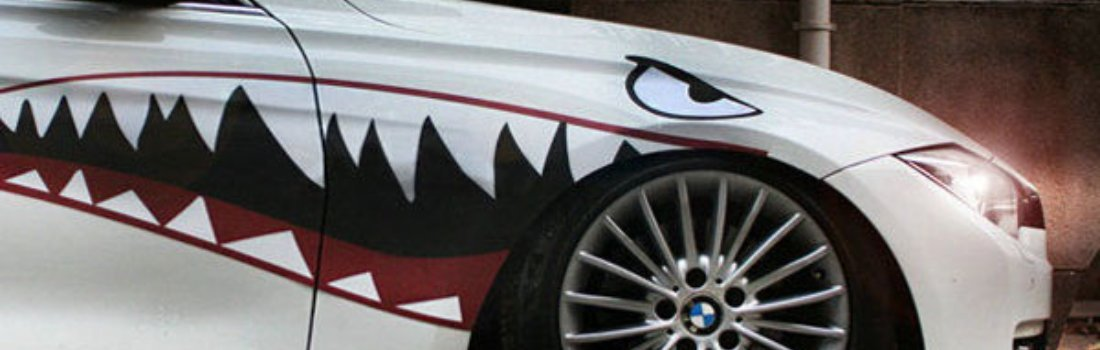 Install the iJDMTOY Shark Decal